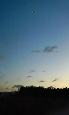 夕方のお散歩