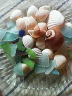 海からの贈り物