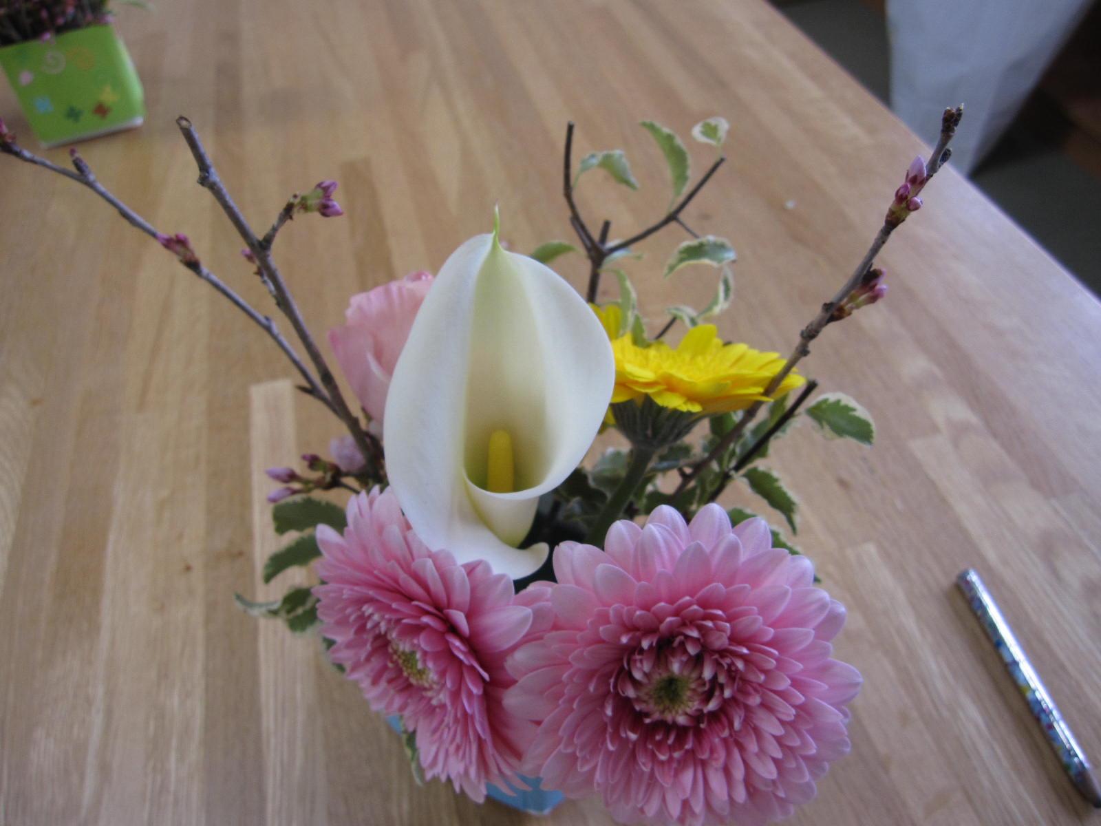 花育活動: 松崎農園 -風の便り-